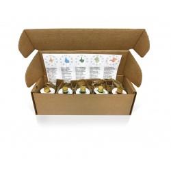 Aceite de oliva virgen extra Oliveclub estuche 5 botella 50 ml
