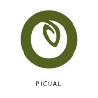 Picual